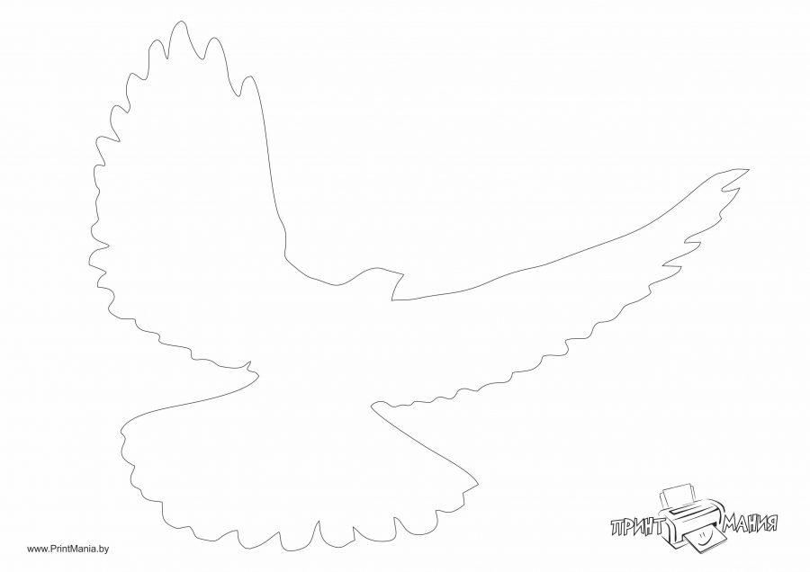 Летящий голубь - шаблон для вырезания