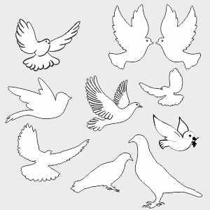 Шаблоны голубей