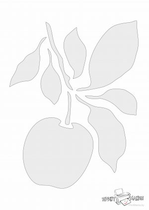 Яблоко на ветке - трафарет