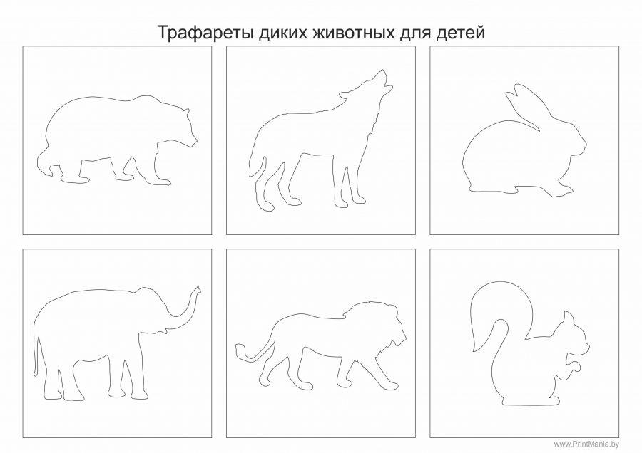 Трафареты диких животных